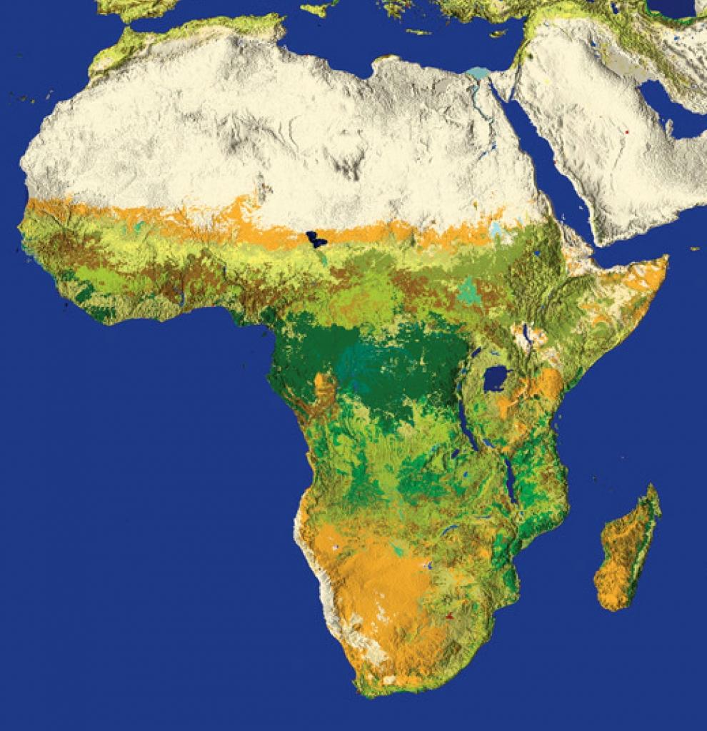 Carte De Lafrique Interactive.Afrique Actualite Presse Audiovisuel Carte France Afrik Zamane