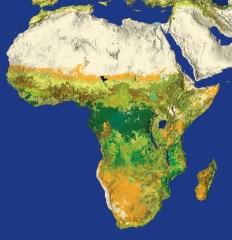 AfricaW.jpg